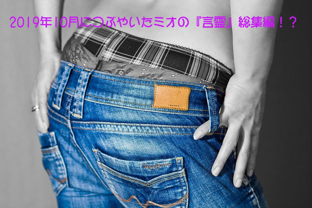 2019年10月につぶやいたミオの『言霊』総集編!?